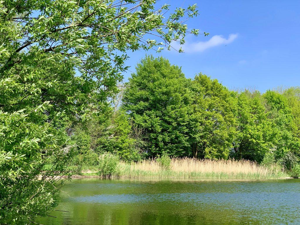Parc du Teich Article Arcachon Ecotours 2