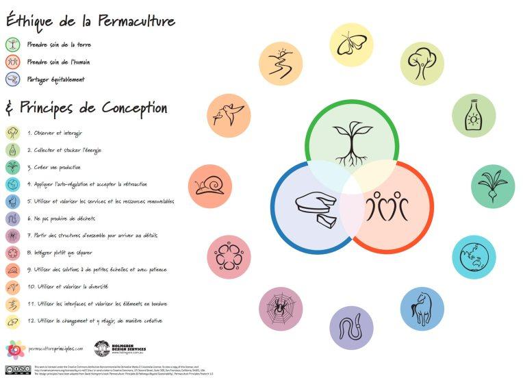 les principes de la permaculture selon https://www.permacultureprinciples.com/fr/