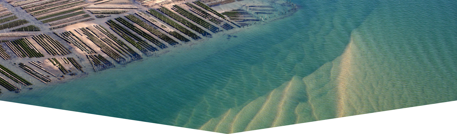 Bassin Arcachon Ecotours seminaire ecolo